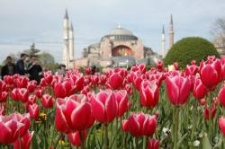 Турция- Приказки от Истанбул и лалета