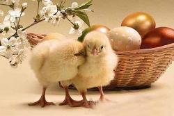 Екскурзии за Великден